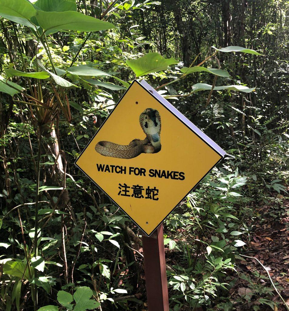 Snakes sign, Thailand, Hady a dovolenka v Thajsku,